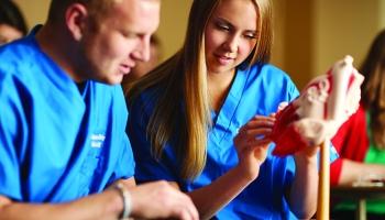 a woman nursing student explains heart model to man nursing student